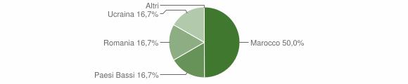 Grafico cittadinanza stranieri - Martone 2019