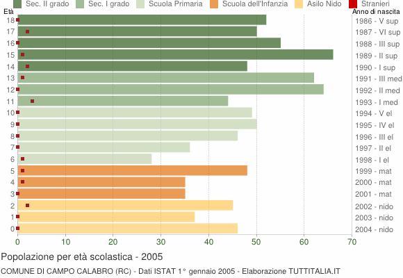 Grafico Popolazione in età scolastica - Campo Calabro 2005