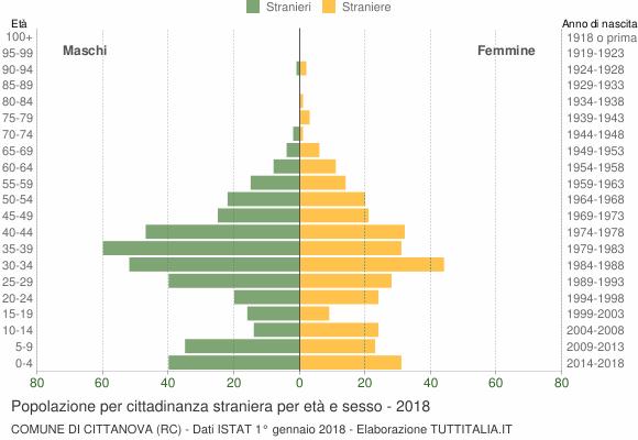 Grafico cittadini stranieri - Cittanova 2018