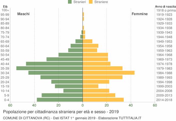 Grafico cittadini stranieri - Cittanova 2019