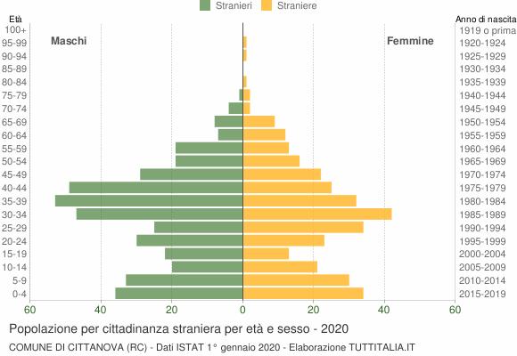 Grafico cittadini stranieri - Cittanova 2020