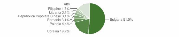 Grafico cittadinanza stranieri - Pizzo 2007