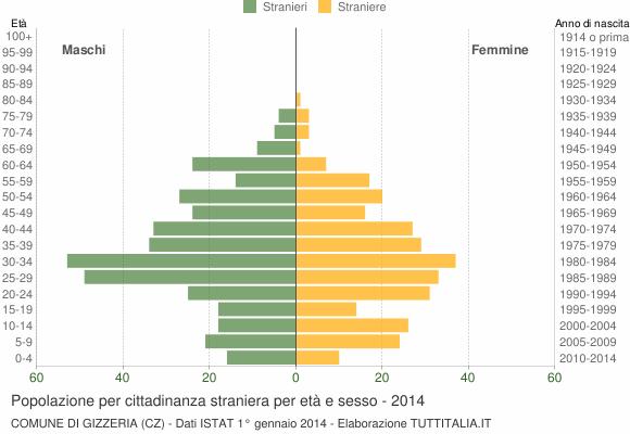 Grafico cittadini stranieri - Gizzeria 2014