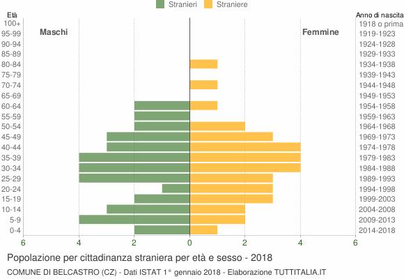 Grafico cittadini stranieri - Belcastro 2018