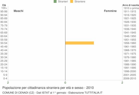 Grafico cittadini stranieri - Cenadi 2010