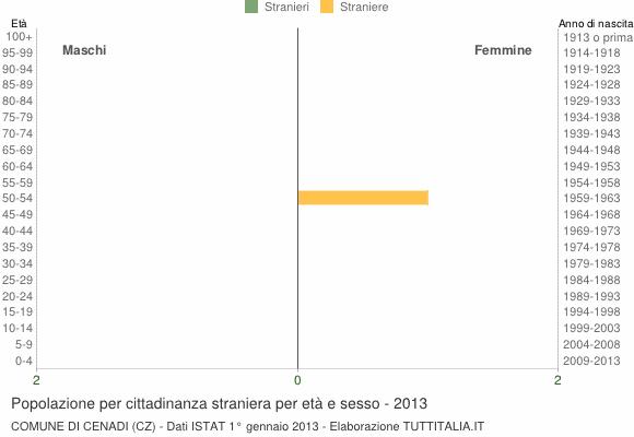Grafico cittadini stranieri - Cenadi 2013
