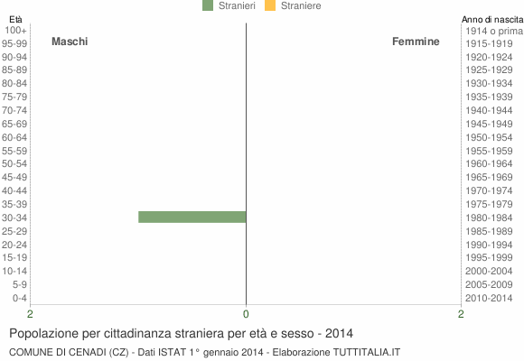 Grafico cittadini stranieri - Cenadi 2014