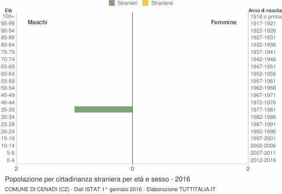 Grafico cittadini stranieri - Cenadi 2016