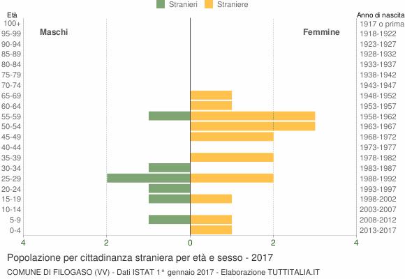 Grafico cittadini stranieri - Filogaso 2017