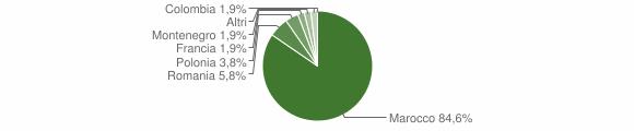 Grafico cittadinanza stranieri - Amato 2009