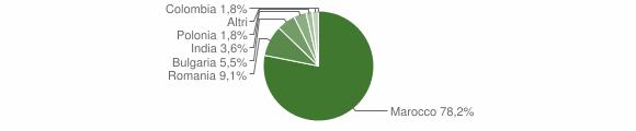Grafico cittadinanza stranieri - Amato 2016