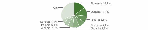 Grafico cittadinanza stranieri - Mendicino 2017