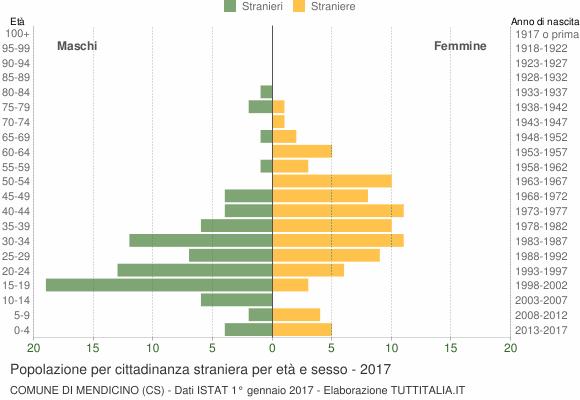 Grafico cittadini stranieri - Mendicino 2017