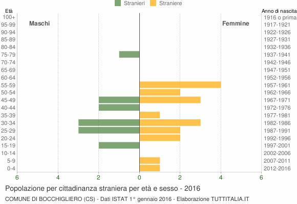 Grafico cittadini stranieri - Bocchigliero 2016