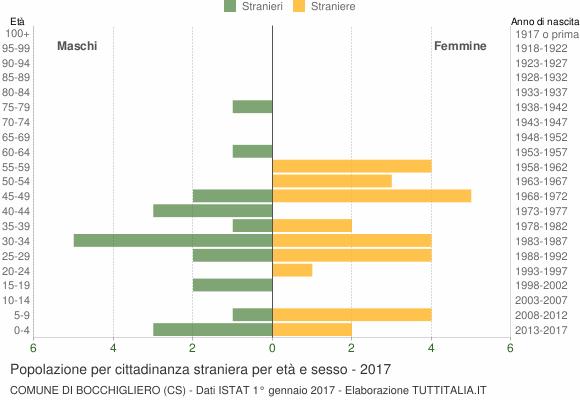 Grafico cittadini stranieri - Bocchigliero 2017