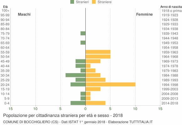Grafico cittadini stranieri - Bocchigliero 2018