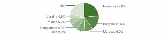 Grafico cittadinanza stranieri - Montepaone 2010