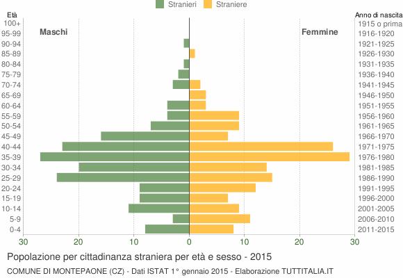 Grafico cittadini stranieri - Montepaone 2015
