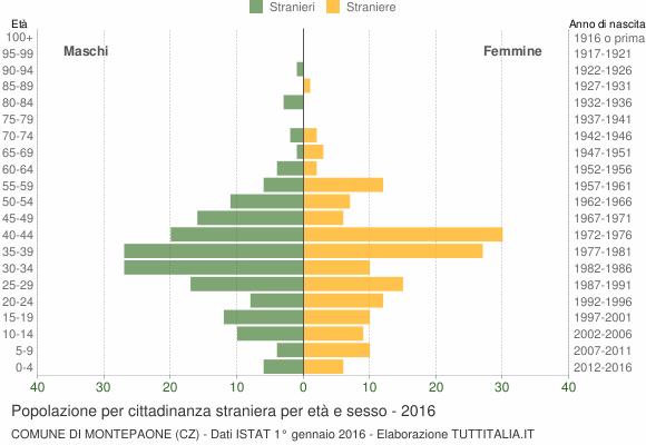 Grafico cittadini stranieri - Montepaone 2016