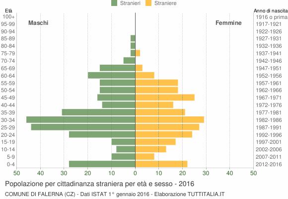 Grafico cittadini stranieri - Falerna 2016