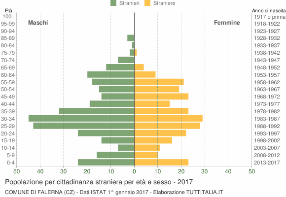 Grafico cittadini stranieri - Falerna 2017