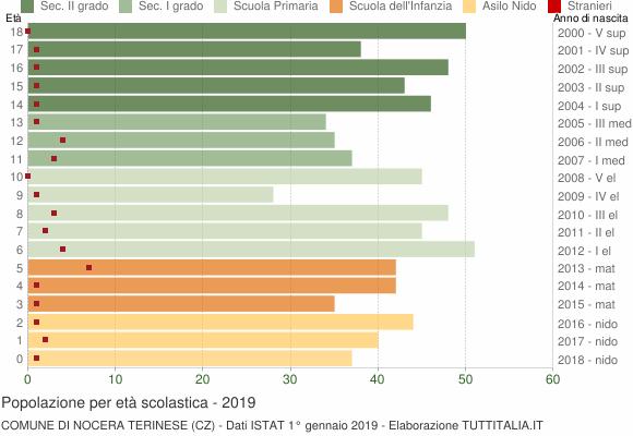 Grafico Popolazione in età scolastica - Nocera Terinese 2019