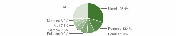 Grafico cittadinanza stranieri - Bivongi 2016