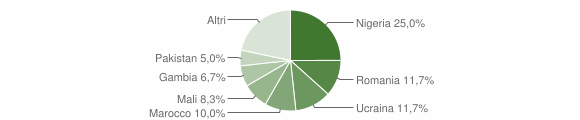 Grafico cittadinanza stranieri - Bivongi 2019