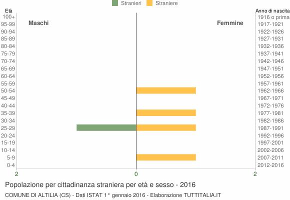Grafico cittadini stranieri - Altilia 2016