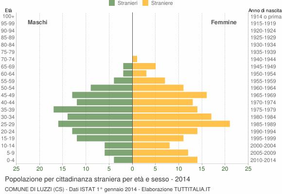 Grafico cittadini stranieri - Luzzi 2014