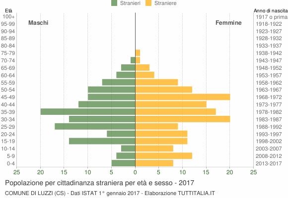 Grafico cittadini stranieri - Luzzi 2017