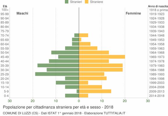 Grafico cittadini stranieri - Luzzi 2018