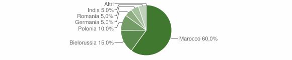Grafico cittadinanza stranieri - Gimigliano 2004