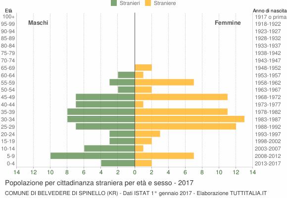 Grafico cittadini stranieri - Belvedere di Spinello 2017