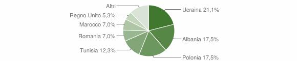 Grafico cittadinanza stranieri - Dipignano 2007
