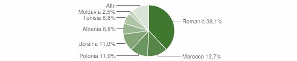 Grafico cittadinanza stranieri - Dipignano 2011