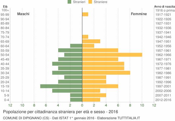 Grafico cittadini stranieri - Dipignano 2016