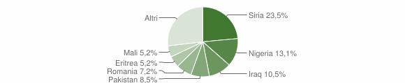 Grafico cittadinanza stranieri - Camini 2017