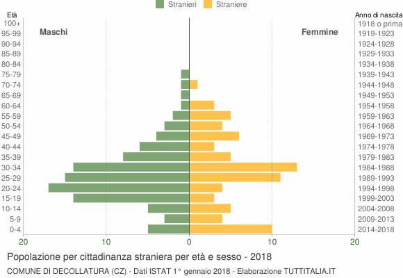 Grafico cittadini stranieri - Decollatura 2018
