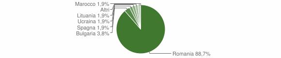 Grafico cittadinanza stranieri - Dinami 2015
