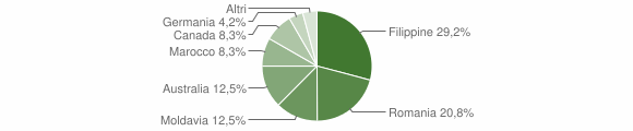 Grafico cittadinanza stranieri - Gerocarne 2007