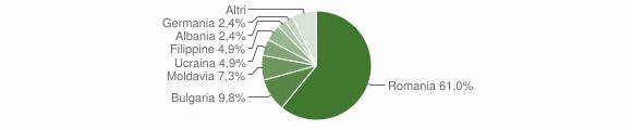 Grafico cittadinanza stranieri - Gerocarne 2013