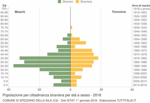 Grafico cittadini stranieri - Spezzano della Sila 2018