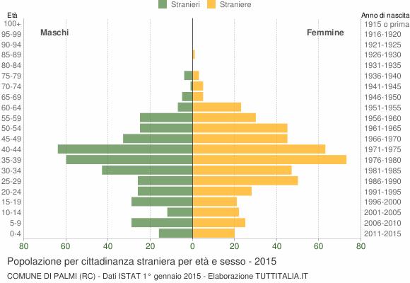 Grafico cittadini stranieri - Palmi 2015