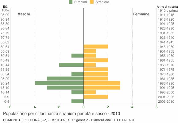 Grafico cittadini stranieri - Petronà 2010