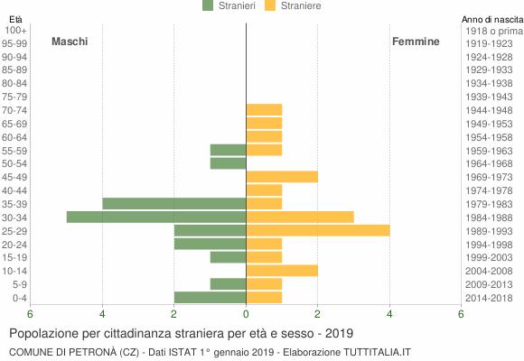 Grafico cittadini stranieri - Petronà 2019