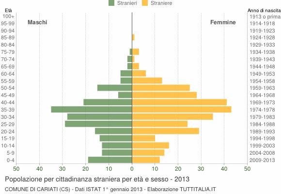 Grafico cittadini stranieri - Cariati 2013