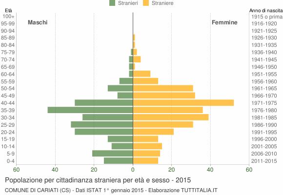 Grafico cittadini stranieri - Cariati 2015