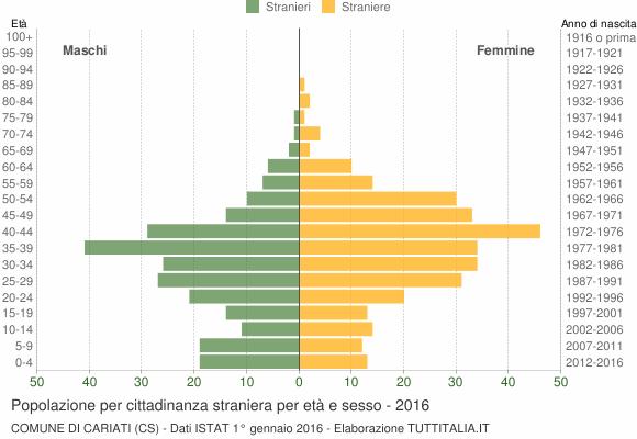 Grafico cittadini stranieri - Cariati 2016