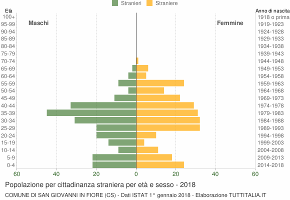 Grafico cittadini stranieri - San Giovanni in Fiore 2018